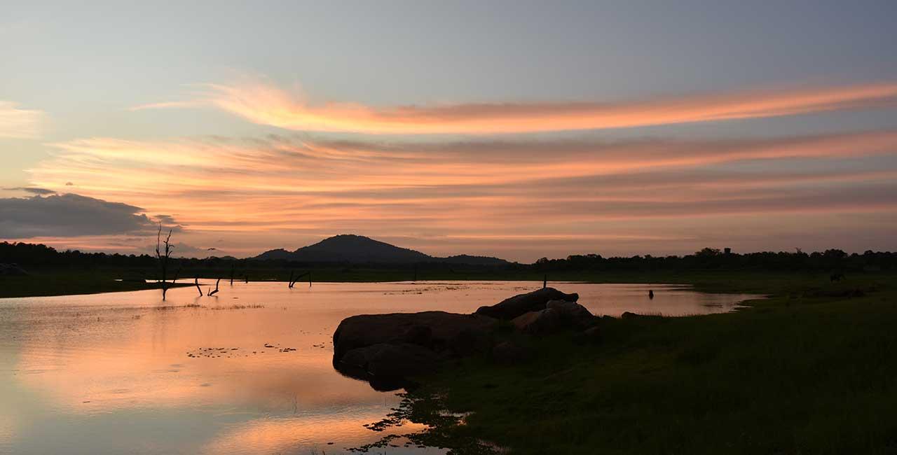 Blog - Mahoora Tented Safari Camps Sri Lanka