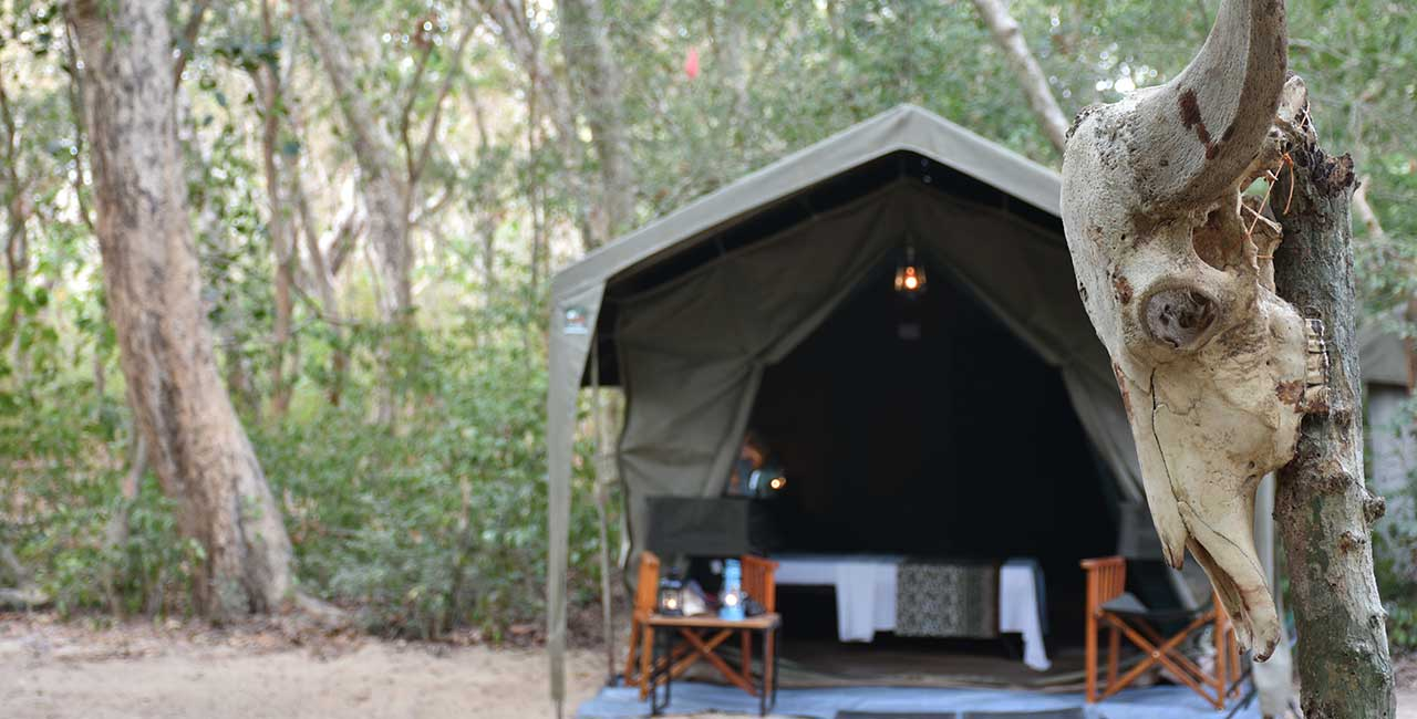 Private Tented Safari Camping Experience in Kumana