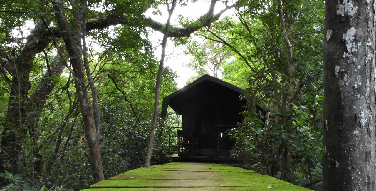 Explorer by Mahoora camps at Wasgamuwa National Park - Sri Lanka