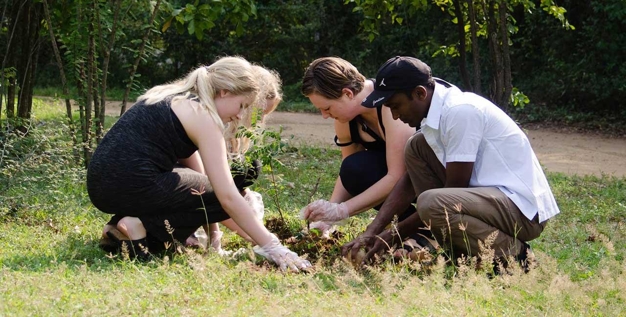 The Mahoora Carbon-free Wildlife Safari Camping Experience in Sri Lanka