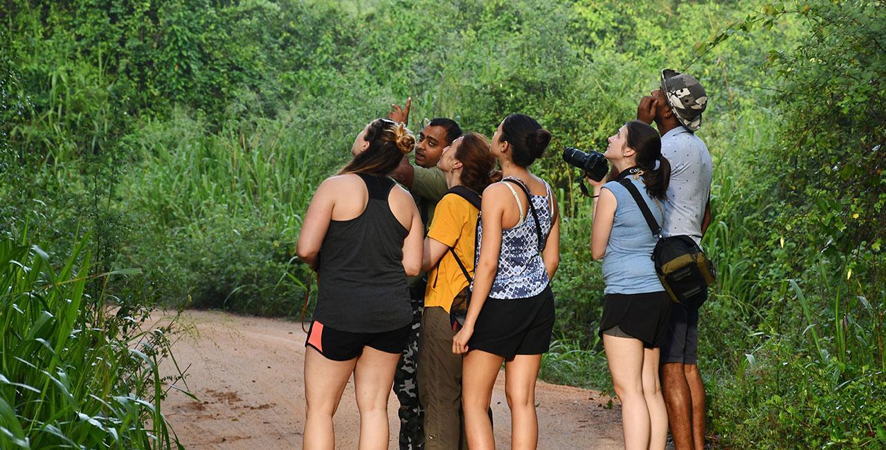 Mahoora value additions at Yala National Park Sri Lanka